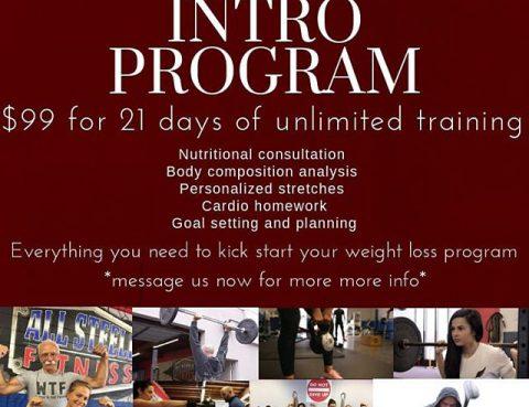 The Intro Program (Feb 2020)